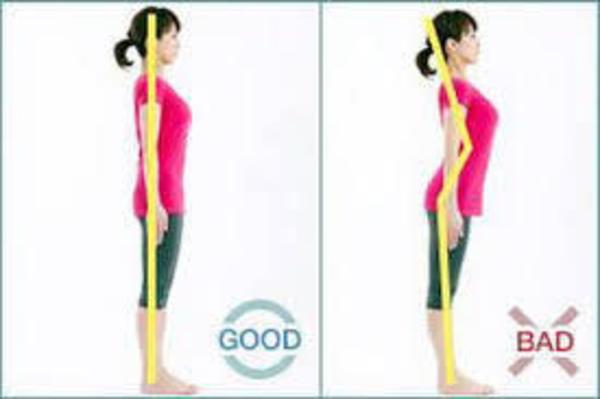 腰と骨盤のS字状のライン(カーブ)を作るには